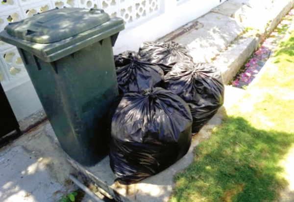 Bagged garden waste not collected | Daily Express Online