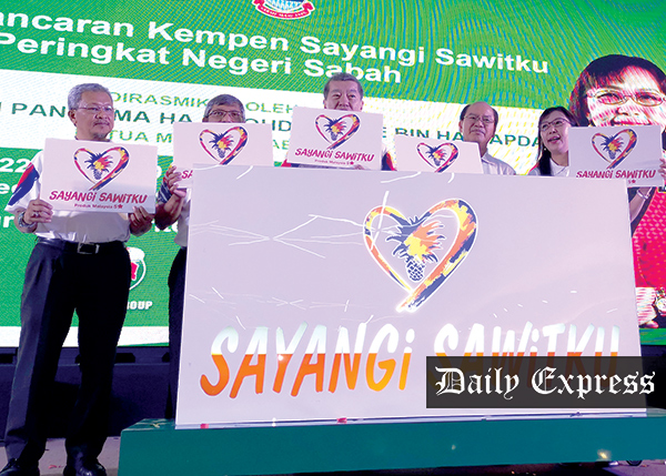 Oil palm estates over 40ha must be MSPO-certified   Daily Express Online - Sabah's Leading News Portal